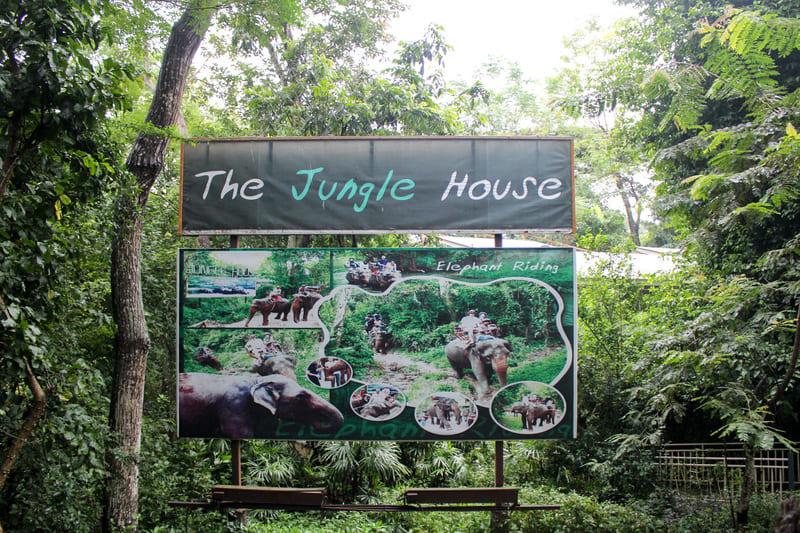 ジャングルハウス